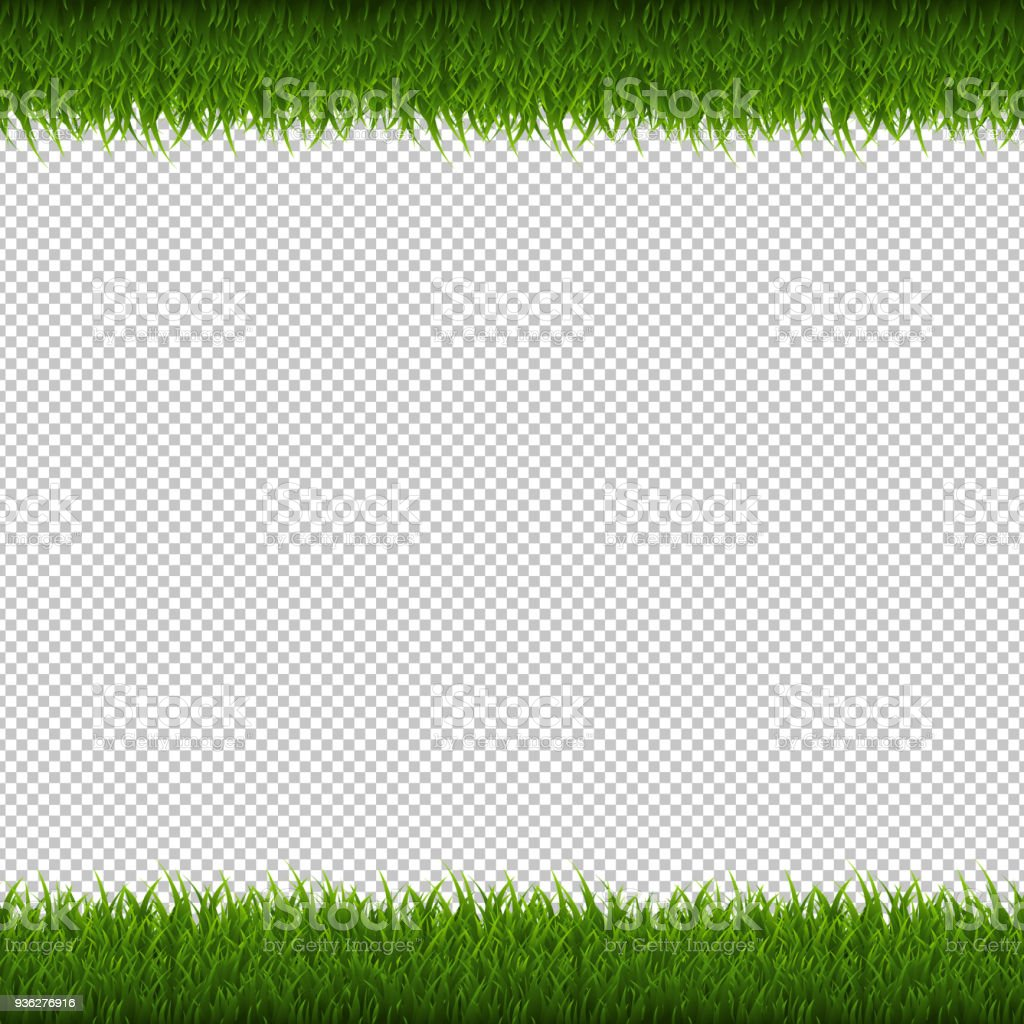 grass border no background minimalist green grass border isolated transparent background royaltyfree green grass border isolated transparent background stock stock vector art