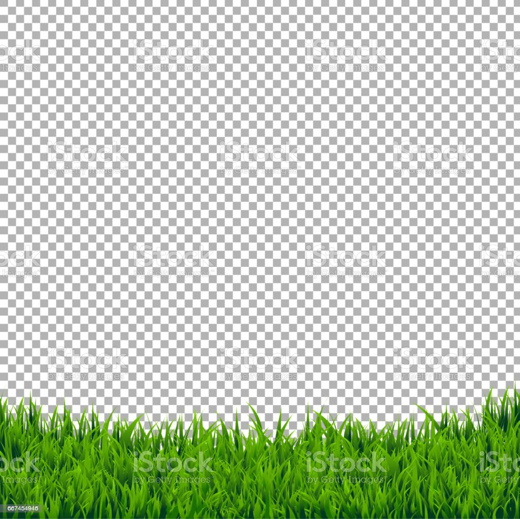 Green Grass Border Isolated vector art illustration