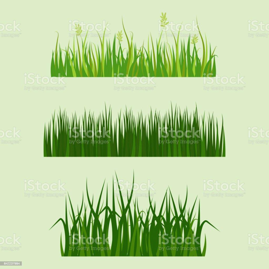 herbe verte bordure plante pelouse nature pr cologie t jardinage illustration vectorielle. Black Bedroom Furniture Sets. Home Design Ideas