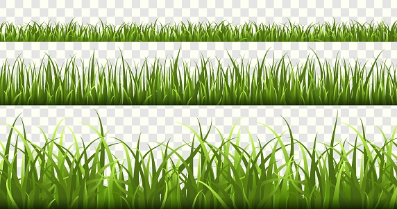 Green grass borders. Football field, summer meadow green nature, panorama herbs spring macro elements, lawn grass isolated vector set