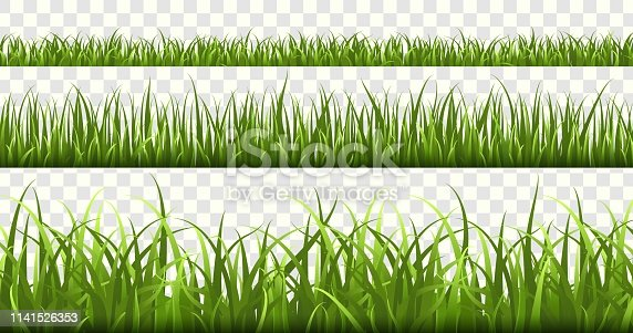 Green grass borders. Football field, summer meadow green nature, panorama herbs spring macro elements, lawn land grass isolated vector frame set