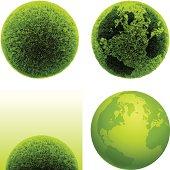 Green grass globes