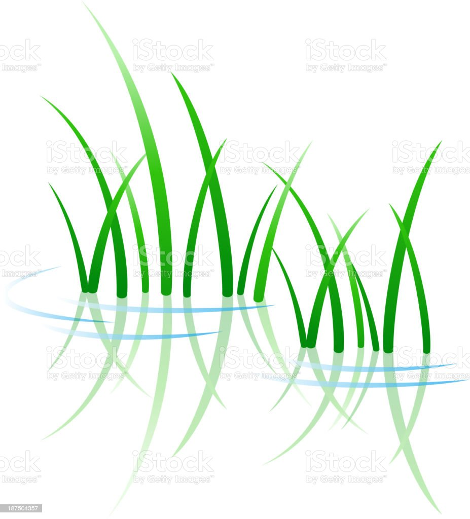Green grass growing through water vector art illustration