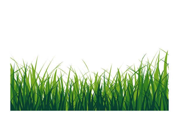 緑の芝生絶縁 - 草原点のイラスト素材/クリップアート素材/マンガ素材/アイコン素材