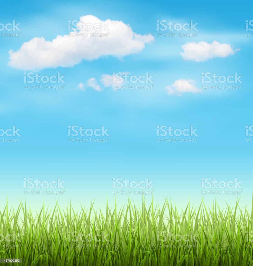 Green Grass Lawn with Clouds on Blue Sky vector art illustration