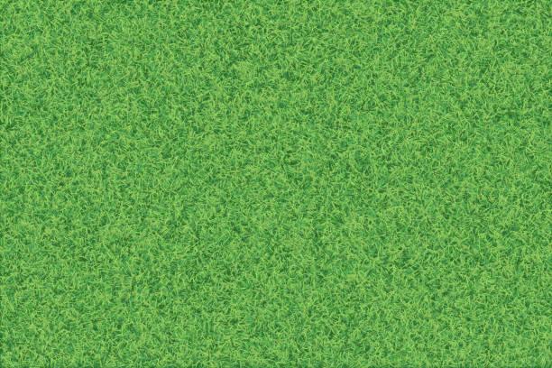 stockillustraties, clipart, cartoons en iconen met groene gras realistische getextureerde achtergrond. - grass