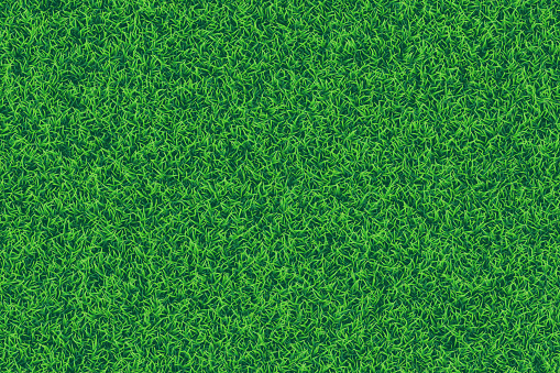 Green grass realistic textured background.