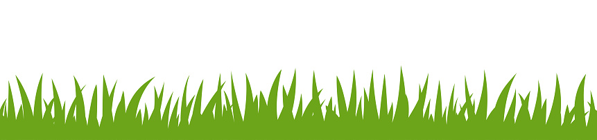 Green Grass Seamless Border Pattern on White Background. Vector Stock Illustration