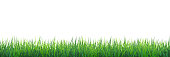 istock Green grass seamless border 1215553029