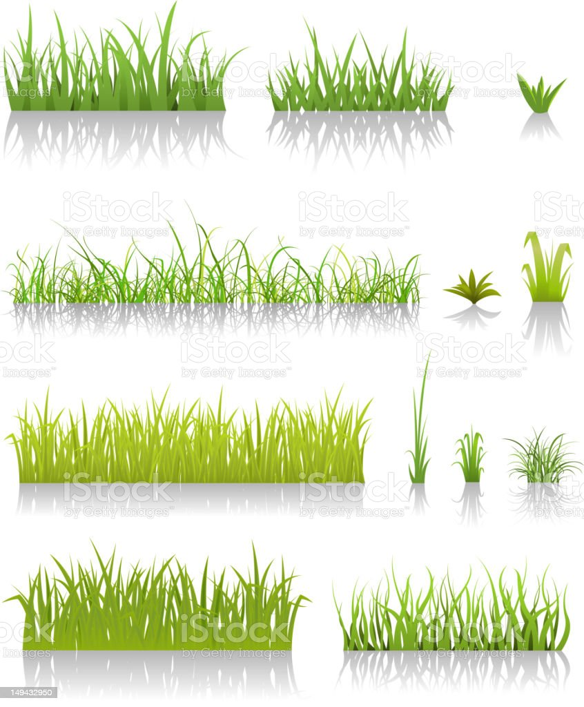Green Grass Set vector art illustration