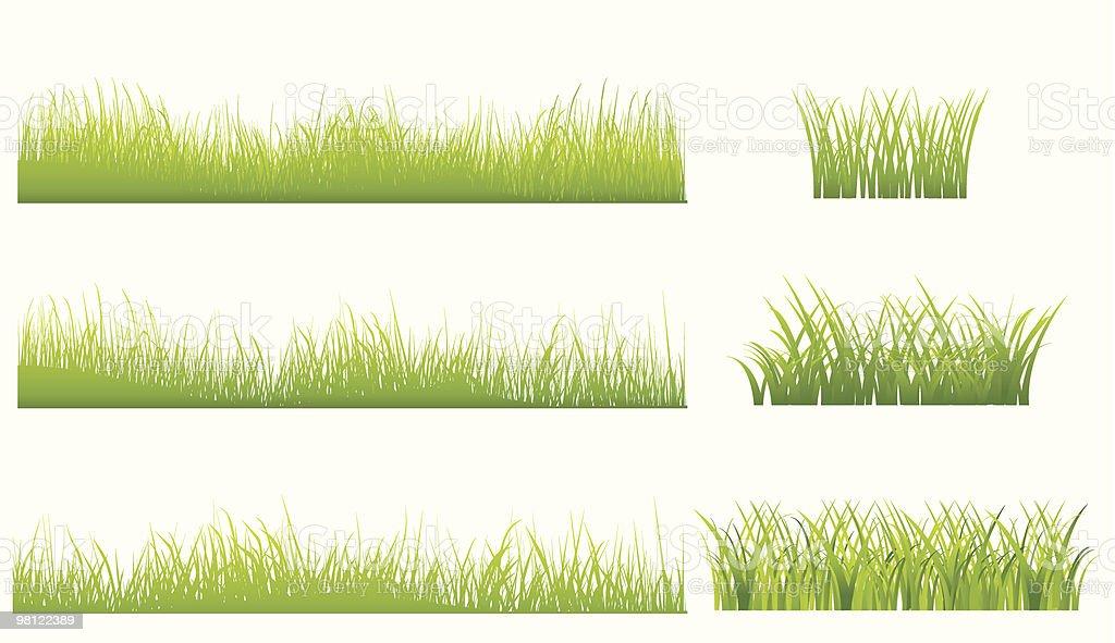 set di erba verde set di erba verde - immagini vettoriali stock e altre immagini di botanica royalty-free