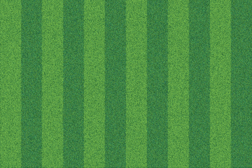 Green grass striped realistic textured background