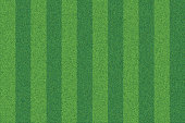 Vector realistic top view illustration of soccer green grass field. Detailed striped line football stadium texture.