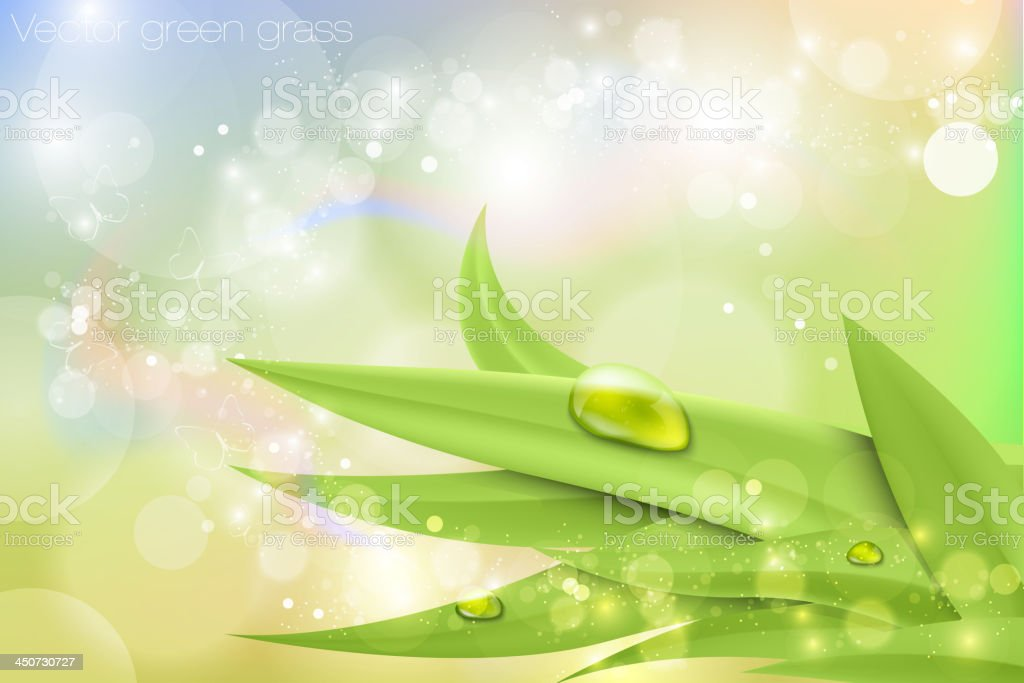 green grass royalty-free green grass stock vector art & more images of abstract