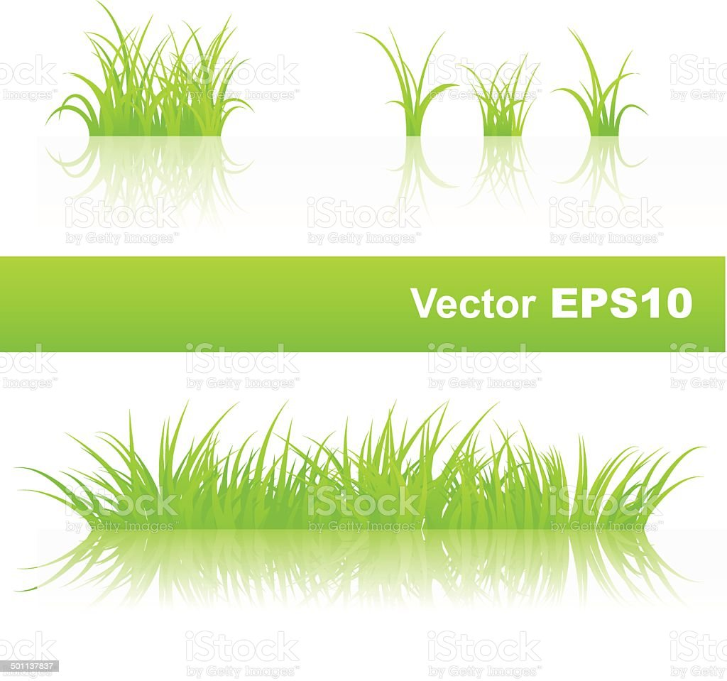 Green grass vector art illustration