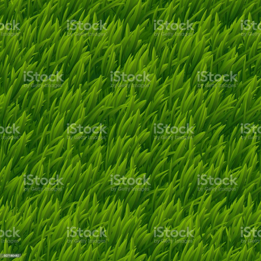 Green grass vector seamless texture vector art illustration