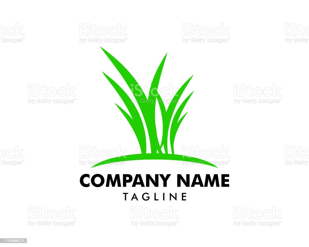 green grass vector logo template stock illustration download image now istock https www istockphoto com vector green grass vector logo template gm1155688224 314719522