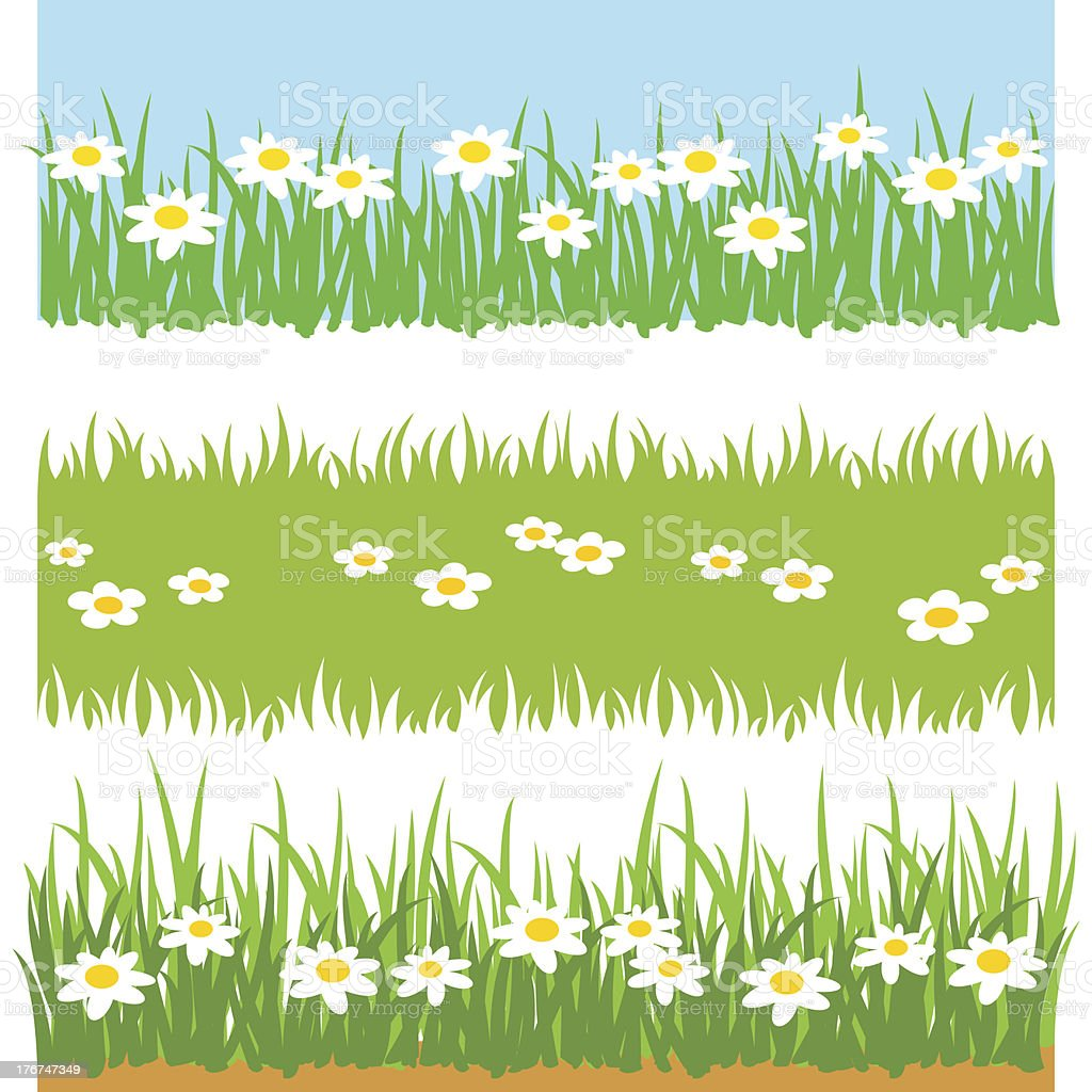Green Grass With White Flowers royalty-free stock vector art