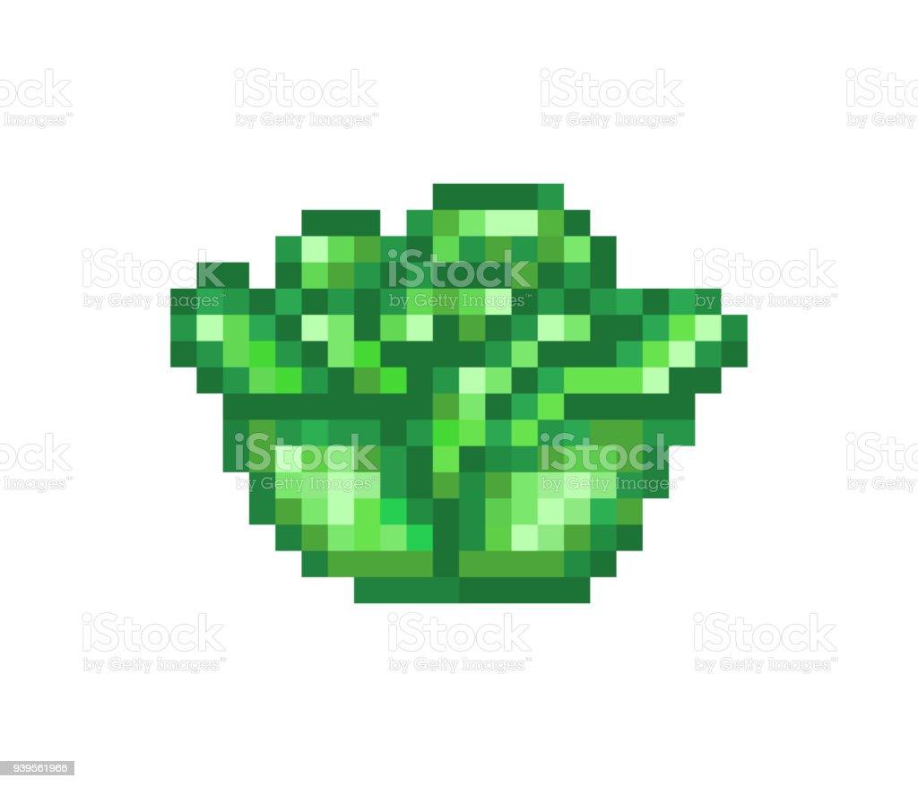 La Tête Vert Chou Icône De Pixel Art Alimentaire Isolé Sur
