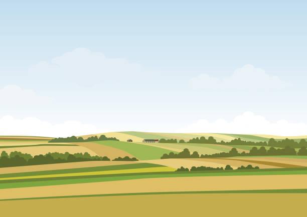 녹색 언덕 풍경입니다. 벡터 일러스트 레이 션의 파노라마 필드 경관과 구름 하늘 - 농장 stock illustrations