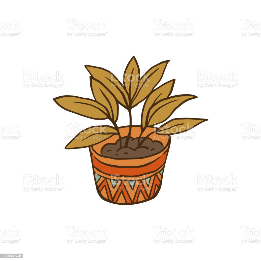 Green House Plant In Decorative Pot Cartoon Drawing Of Houseplant Stock Illustration Download Image Now Istock