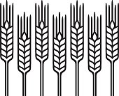 Wheat, Barley or Rye, vector visual graphic pattern illustration, fully adjustable and scalable