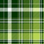 istock Green irish diagonal abstract plaid seamless pattern 1161476888
