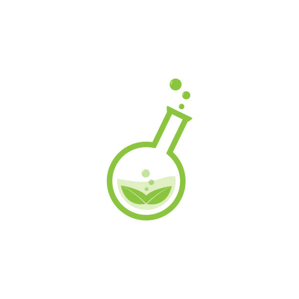 green lab  vector design green leaf symbol in natural research laboratory bottle laboratory flask stock illustrations