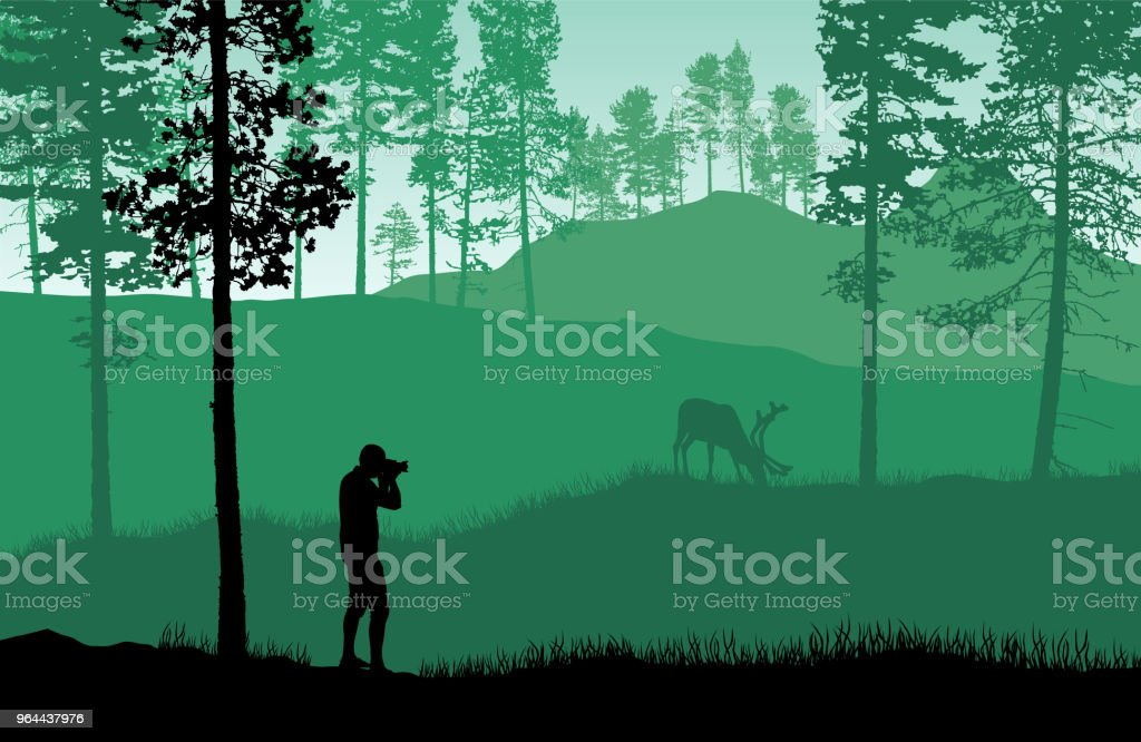 Green landscape vector with a man taking picture of a deer in a forest. - Royalty-free Activity stock vector