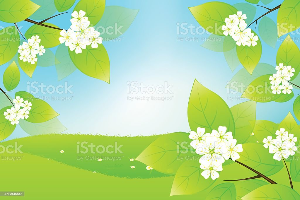 Green Landscape with Tree Branch royalty-free stock vector art