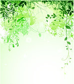 drawing of vector green leaf background. This files has been created contains a transparency blends/gradients. Additional. Adobe illustrator cs4 included. EPS10 format.