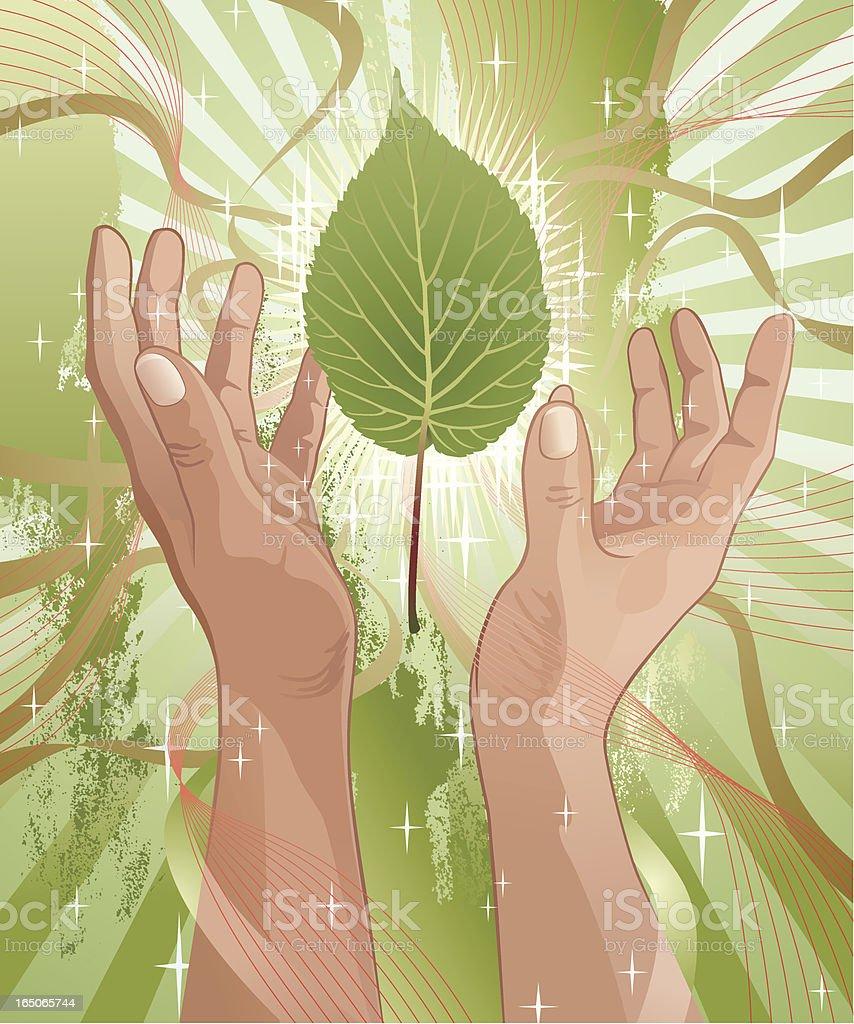 Green Leaf Between Praising Hands Vector royalty-free stock vector art
