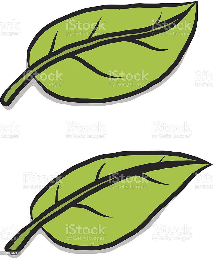 feuille verte dessin anim feuille verte dessin anim cliparts vectoriels et plus dimages - Dessin De Feuille