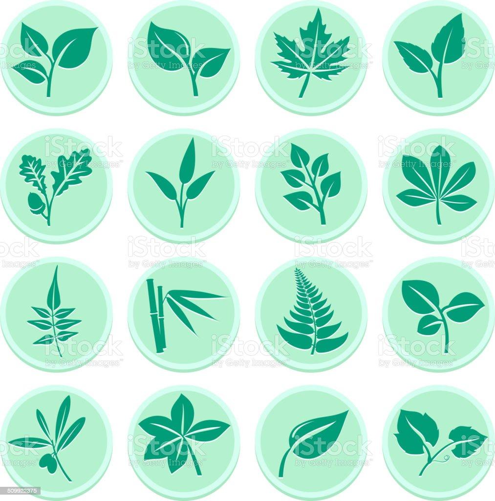 Green Leaf Flat Icons vector art illustration