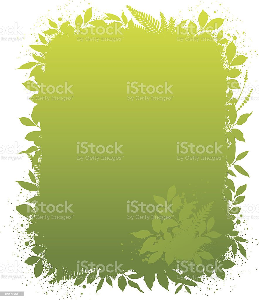 Green leaf frame and background royalty-free green leaf frame and background stock vector art & more images of backgrounds