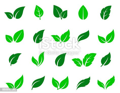 green leaves icons set on white background