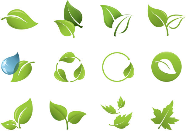 green leaf icons - leaf stock illustrations, clip art, cartoons, & icons