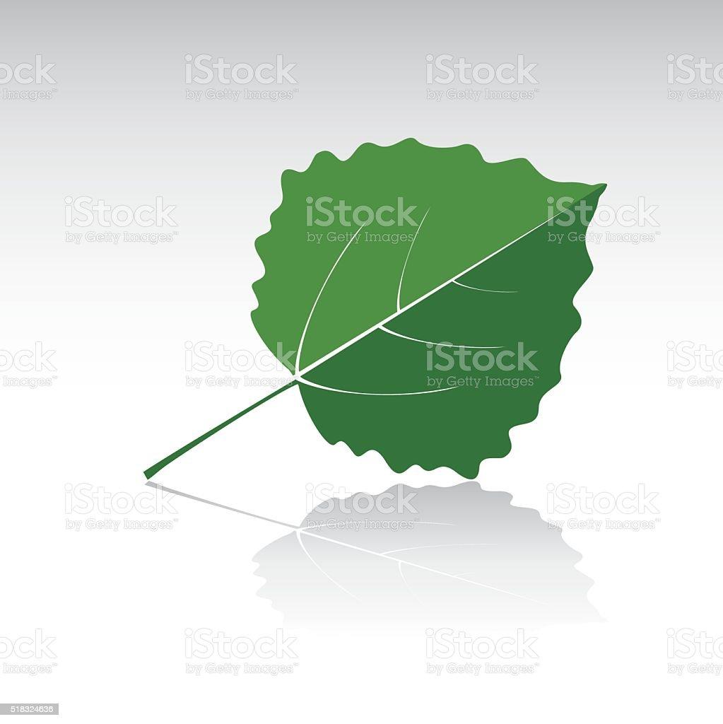 Green leaf of Aspen. Vector illustration and icon. vector art illustration