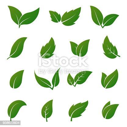 Green leaf vector icons. Spring leaves ecology symbols. Green leaf and spring nature organic illustration
