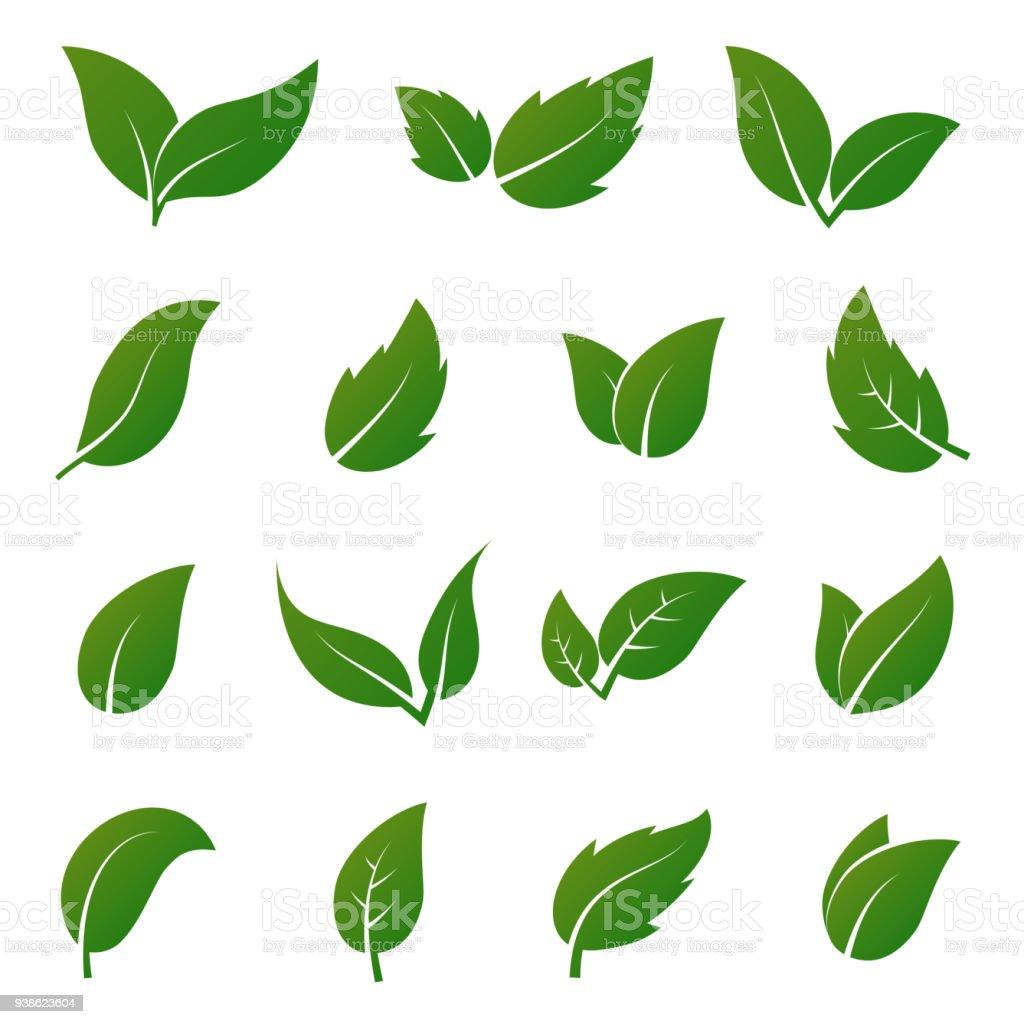 Green leaf vector icons. Spring leaves ecology symbols vector art illustration