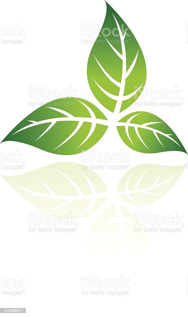 Green feuille green feuille – cliparts vectoriels et plus d'images de arbre libre de droits