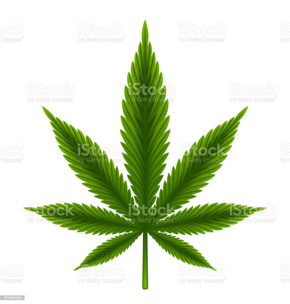 royalty free weed clip art vector images illustrations istock rh istockphoto com weed clipart gif wed clip art