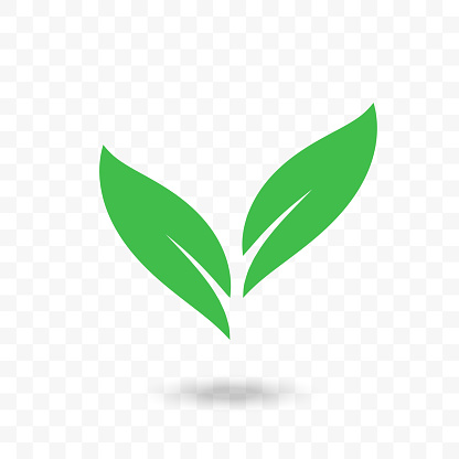 Green leaf vector logo. Isolated icon for vegetarian or vegan cafe, ecology environment and bio food label or horticulture design