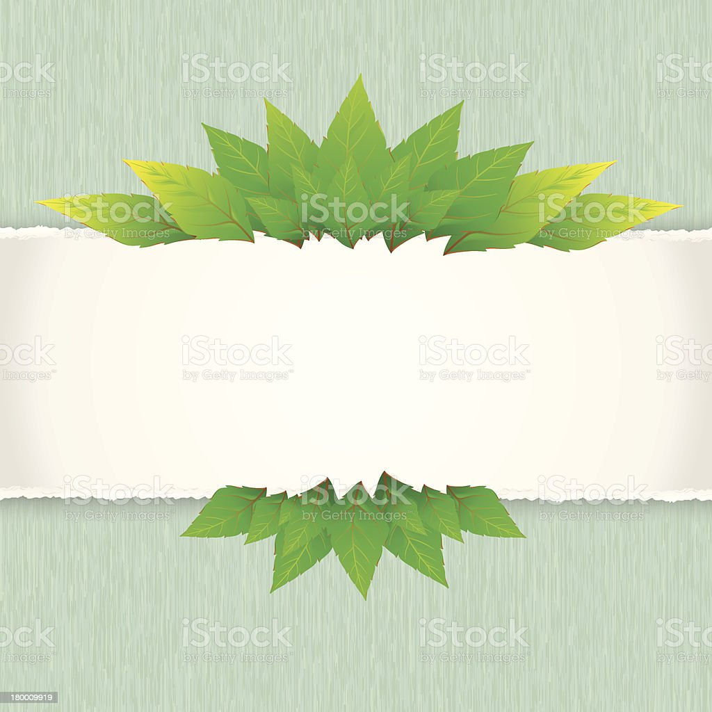 Green leaf with paper background royalty-free green leaf with paper background stock vector art & more images of abstract