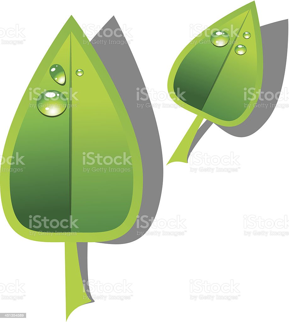 Green leafs royalty-free green leafs stock vector art & more images of abstract