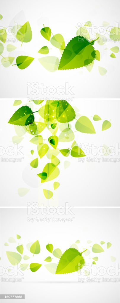 Green leaves backgrounds royalty-free stock vector art