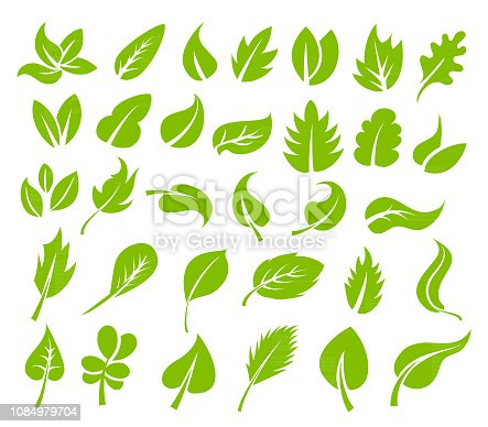 Vector illustration of the green leaves icon set