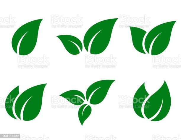 eco green leaf icon set on white background