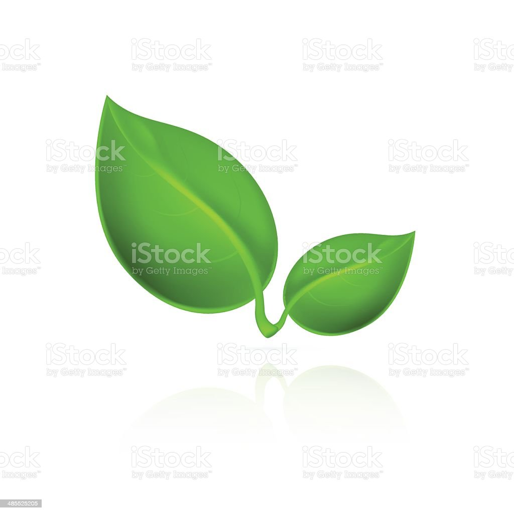 Green leaves icon. royalty-free green leaves icon stock vector art & more images of abstract