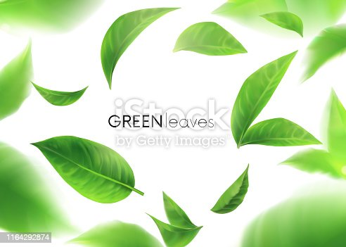Green leaves. leaves whirl in the air. Spring. Element for design, advertising, packaging products. white background 3d illustration